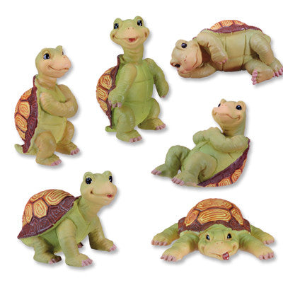 Turtles (Set of 6)