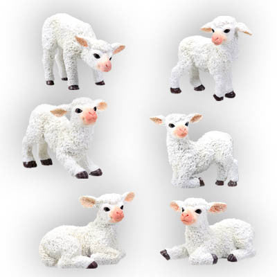 Sheep (Set of 6)