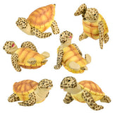 Sea Turtles (Set of 6)