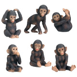 Chimpanzees (Set of 6)