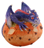 Blue Dragon Hatching