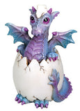 Bindy Dragon Hatchling