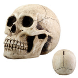 Skull Money Bank