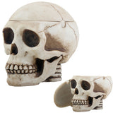 Skull Box Ashtray