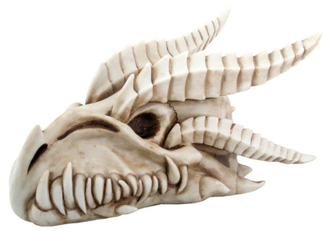 Small Dragon Skull