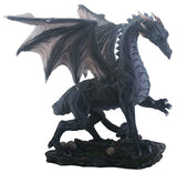 Medium Black Midnight Dragon