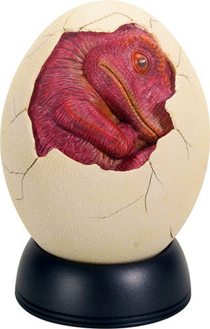 Red Baby Egg Hatchling