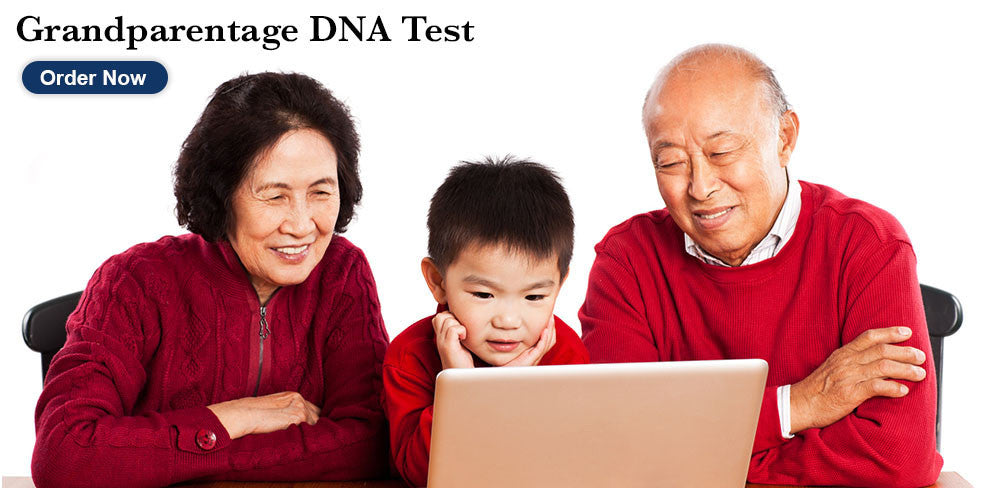 Grandparentage DNA Test