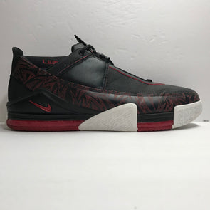 Nike Zoom Lebron 2 II Low PE Sample Size 16