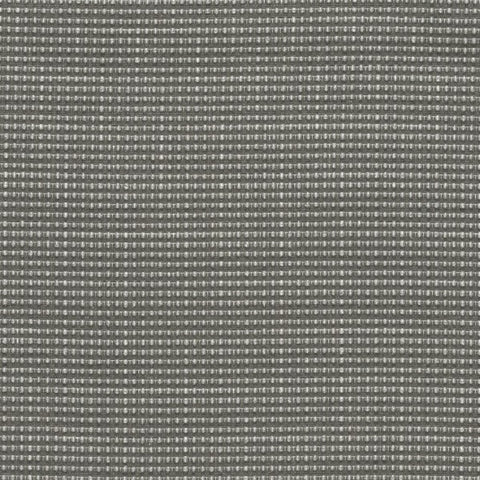 Designtex Appleseed Zinc Gray Upholstery Fabric