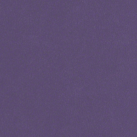 CF Stinson Fabric Remnant of Avant Deep Violet