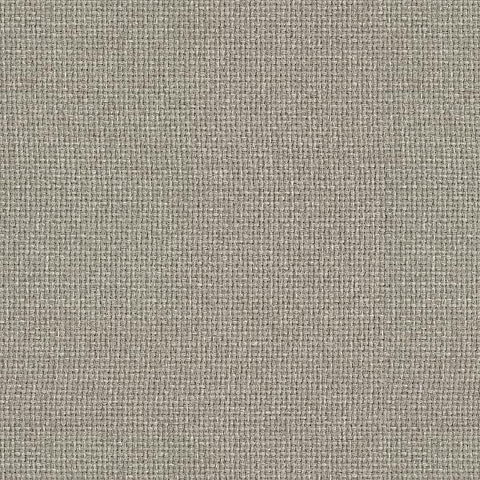 Remnant of Carnegie Hashtag 37 Light Grey Upholstery Fabric