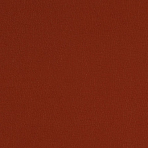 Fabric Remnant of Momentum Canter Ancho Upholstery Vinyl