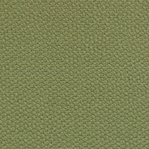 Fabric Remnant of Sense Cactus Green Upholstery Fabric
