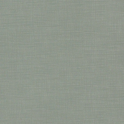 Momentum Textiles Upholstery Fabric Remnant Silica Etch Rain
