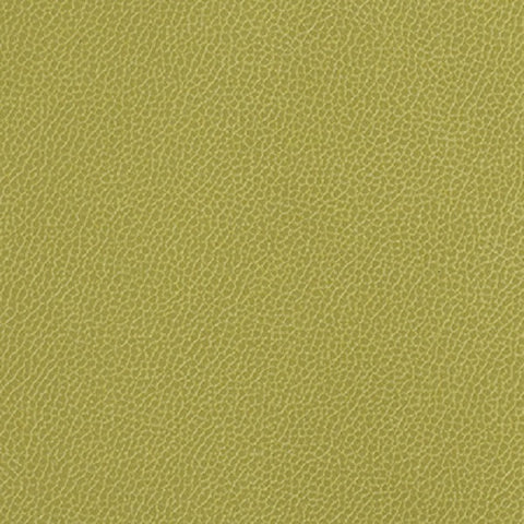 Momentum Textiles Upholstery Fabric Remnant Silica Leather Aloe