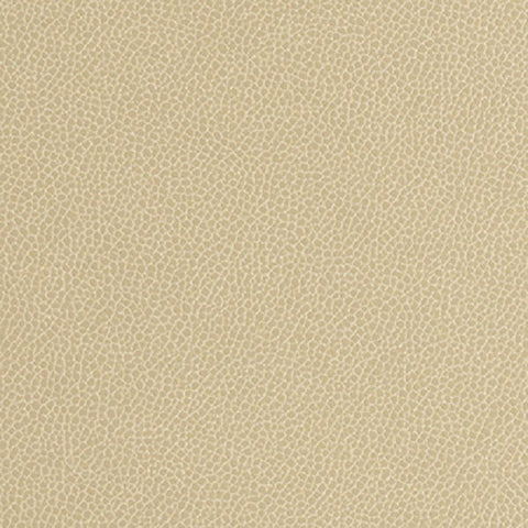 Momentum Textiles Upholstery Fabric Remnant Silica Leather Barley