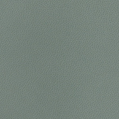 Momentum Textiles Upholstery Fabric Remnant Silica Leather Chambray