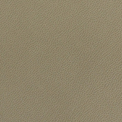 Momentum Textiles Upholstery Fabric Remnant Silica Leather Lichen