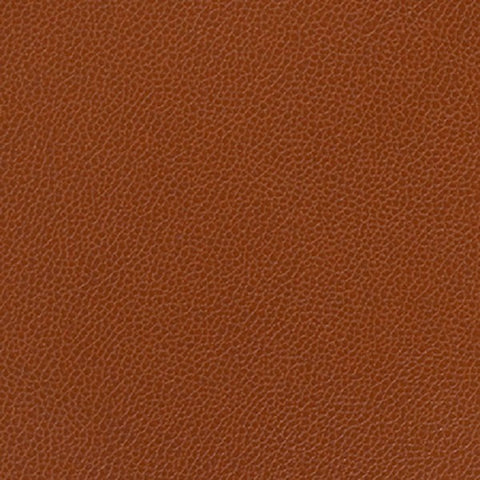 Remnant of Momentum Silica Leather Rustic Upholstery Vinyl