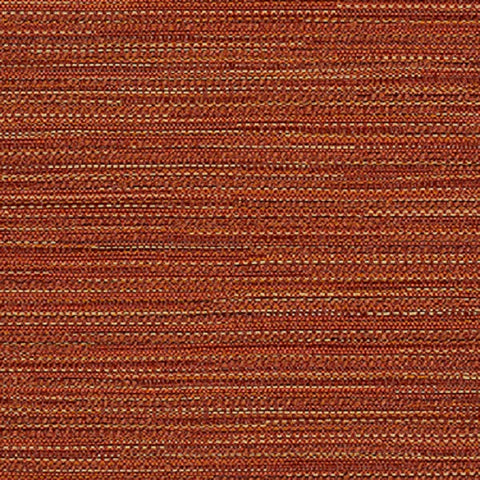 Remnant of Momentum Synergy Tango Upholstery Fabric