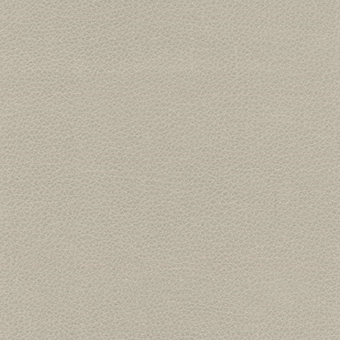Ultraleather Fabric Remnant of Ultraleather Toscana White Sand