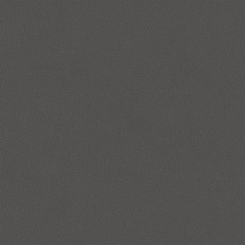 Carnegie Hide Color 19 Vinyl Grey Upholstery Fabric