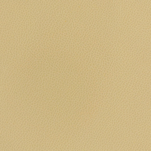 Upholstery Silica Leather Dune Toto Fabrics Online