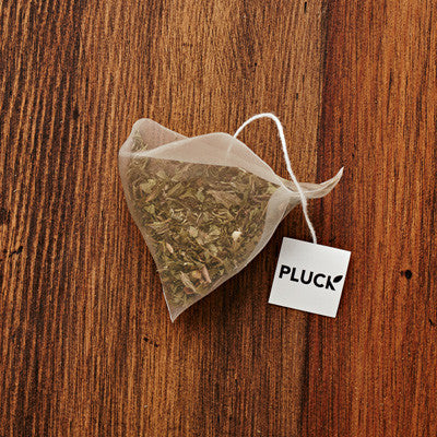 Pluck - Harvest Mint (50 bags) - LARGE BAG