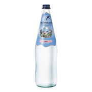San Benedetto Spring Water (Glass) (12x1.0L)