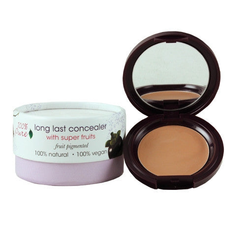 Fruit Pigmented Long Lasting Concealer - Golden Peach