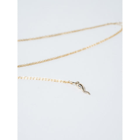 Italian Horn Necklace