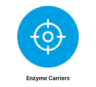 Enzyme Carriers