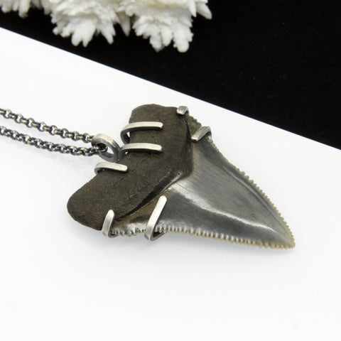 Queen Of The Miocene Necklace