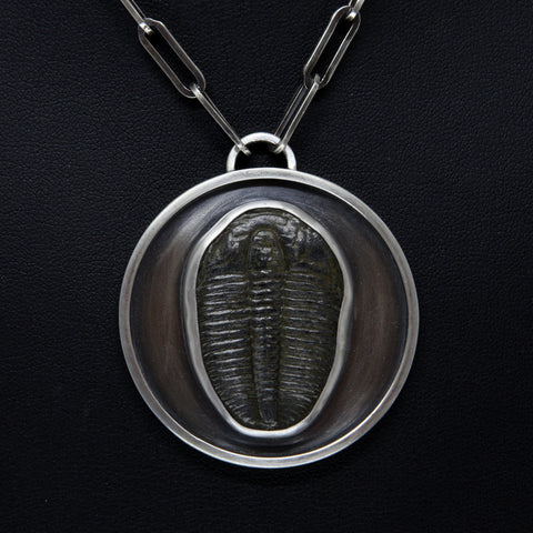 XL Trilobite Medallion