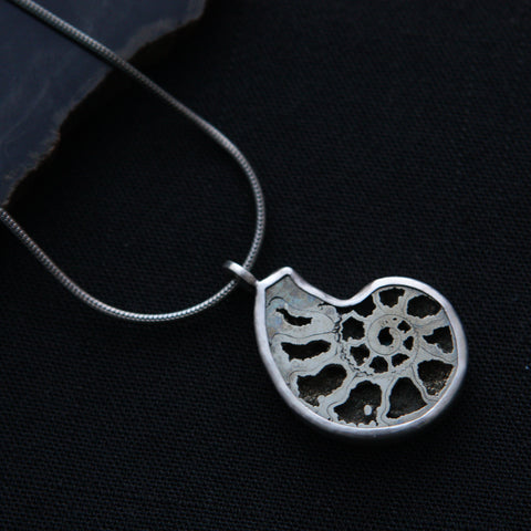 Pyritized Ammonite Necklace - Genuine Fossil in Sterling Silver