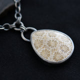 Flora and Fauna Necklace - Fossil Coral and Sterling Silver