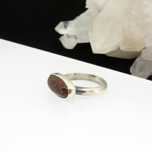 Lithic Ring - Fossilized Dinosaur Bone - Size 9