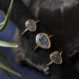 Trilobite Ring - Genuine Fossil Ring - Brass