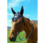 Cooper's Come Back Adjustable Riding Reins