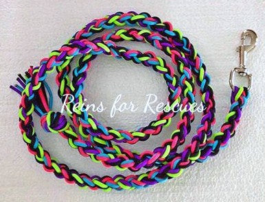 Neon Lead Rope with Turquoise, Lime Green, Hot Pink, Black & Acid Purple
