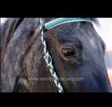 Custom Paracord Headstall with Matching Reins Option