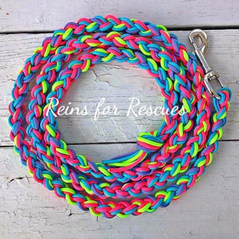 Turquoise, Lime, Hot Pink & Lavender Lead Rope