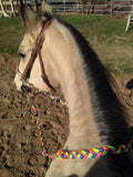 Kota's Rainbow Adjustable Riding Reins