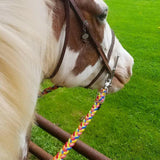 Helmet Awareness Adjustable Riding Reins