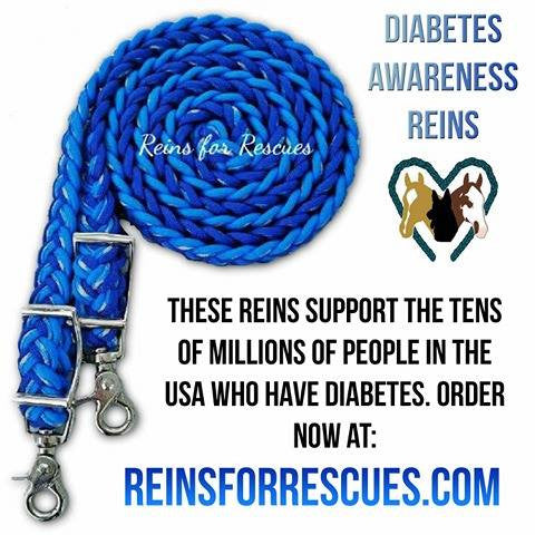 Diabetes Awareness Adjustable Riding Reins