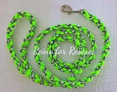 Neon Green & Mint Cookie Dog Leash