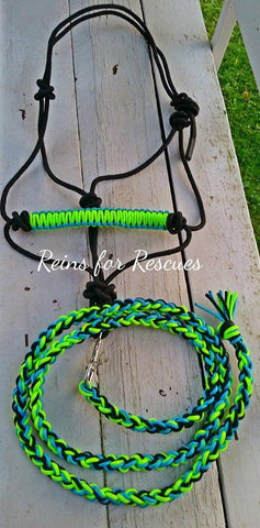 Rope Halter with Matching Lead Rope, Horse Sized