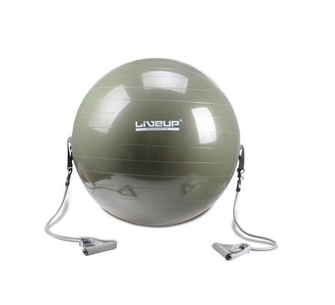 Gym Ball with Toning Tubes