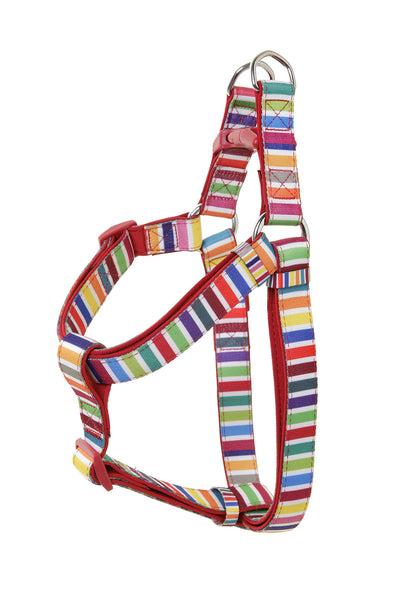 DOOG Harness -  Scooby